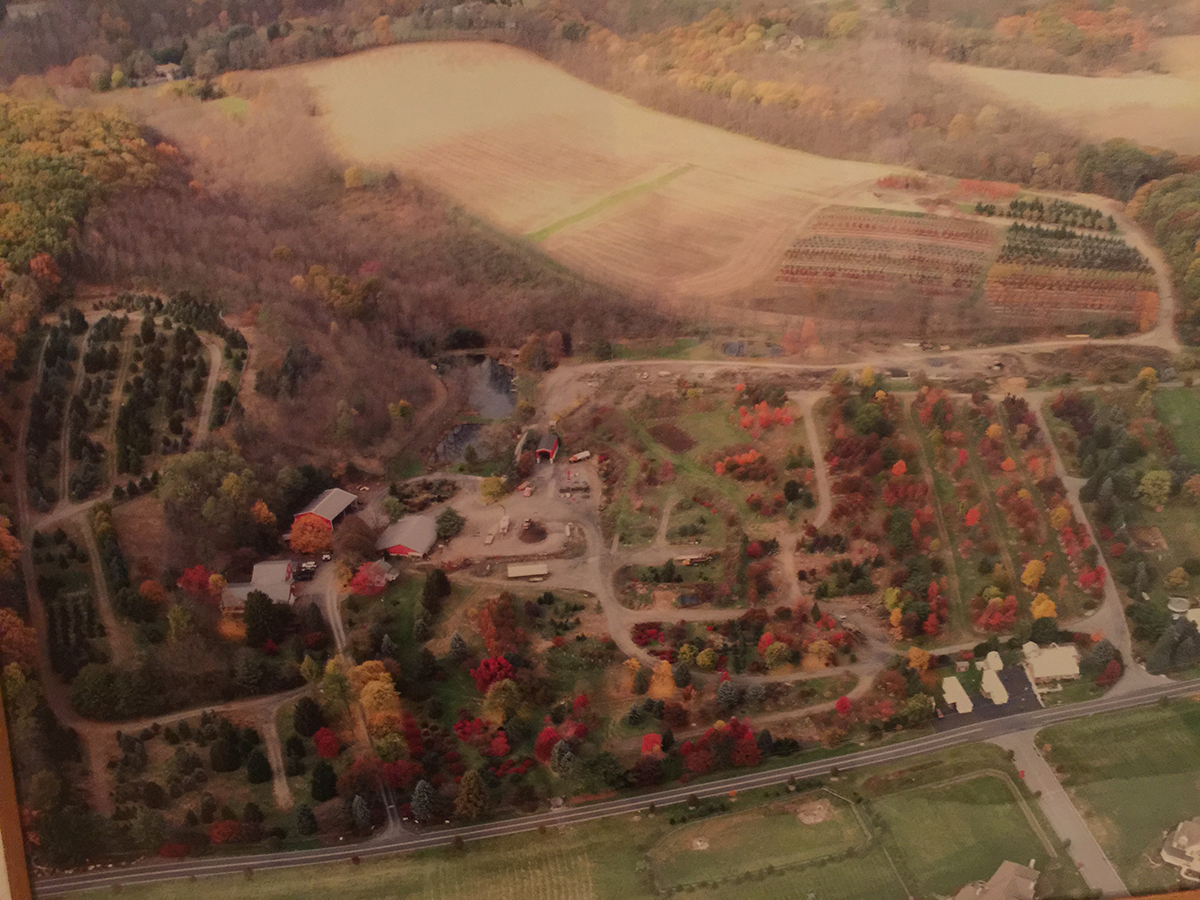 Shrub and Tree Nursery in The Lehigh Valley, PA - Benkini Landscaping